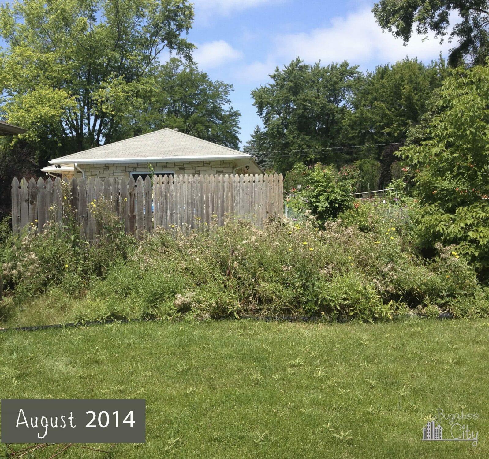 our garden transformation bugaboocity