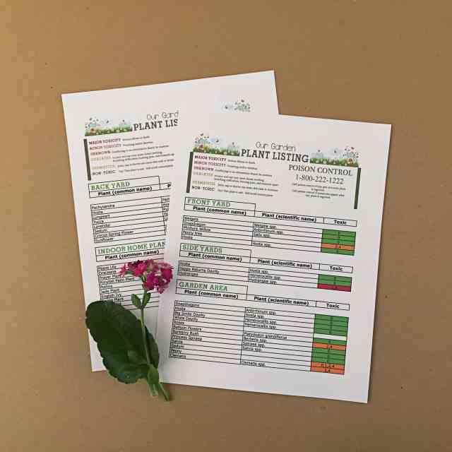 Garden Safety Sheet