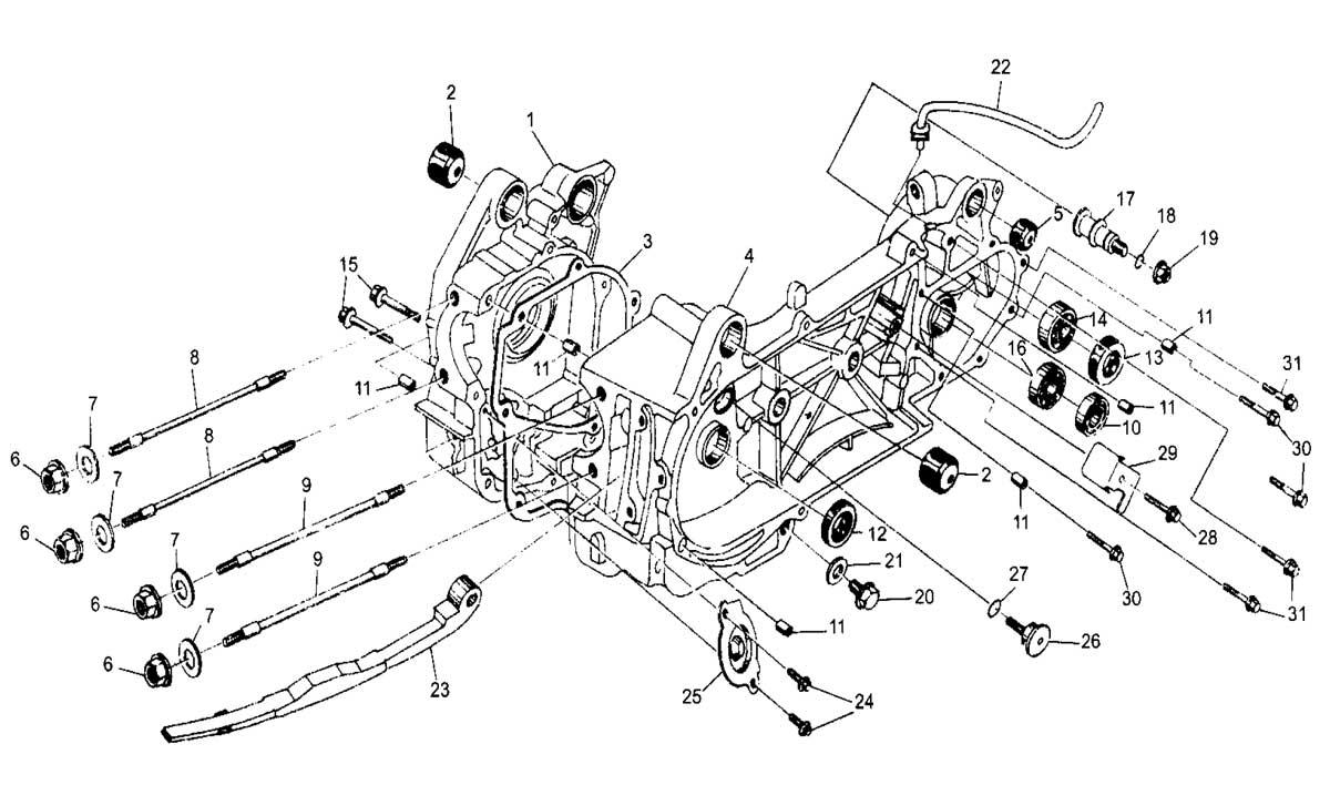 Hammerhead 250ss Super Sport Crankcase Assembly