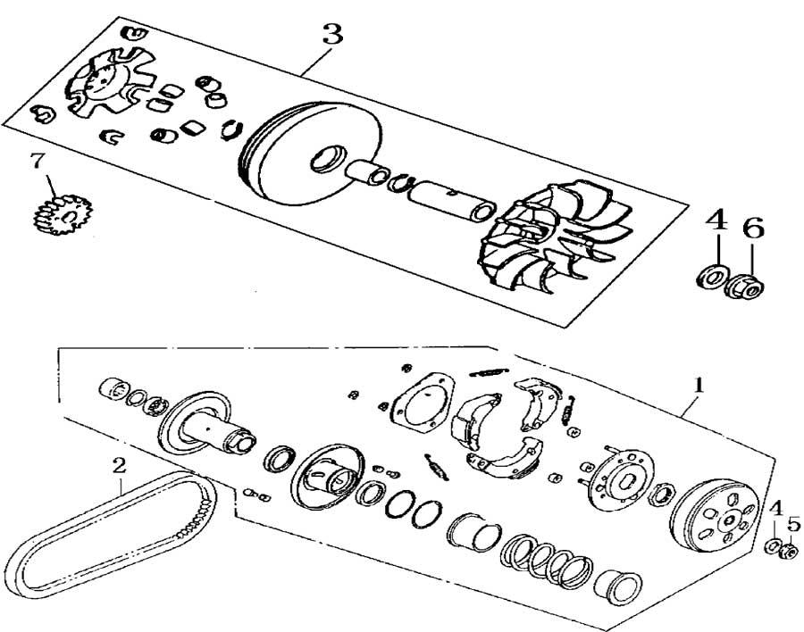 Hammerhead 150 Wiring Diagram