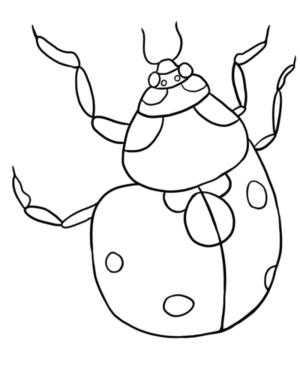 bug coloring page # 70