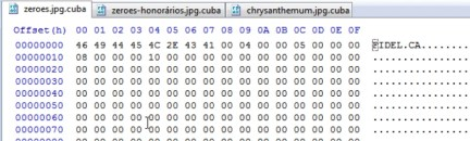 FIDEL.CA File Marker