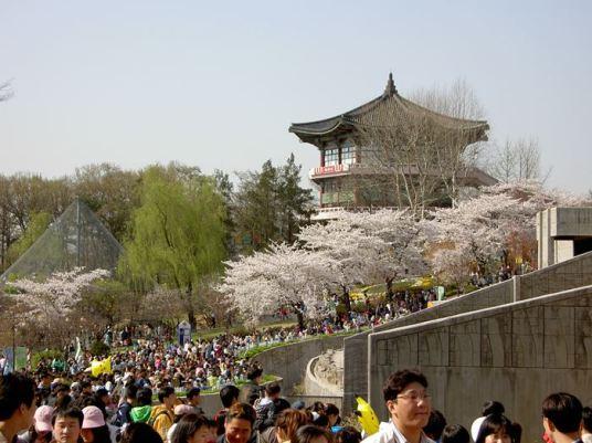 Spring at Seoul Children's Grand Park