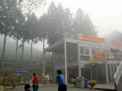 Visitor Center at the Bosong Green Tea Plantation