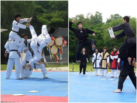 L- Kukkiwon in 2009 and R- Black Tigers in 2010