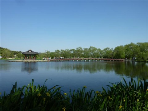 The pavilion in the middle of the pond