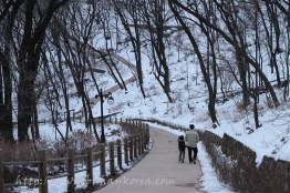Winter in Namsan...