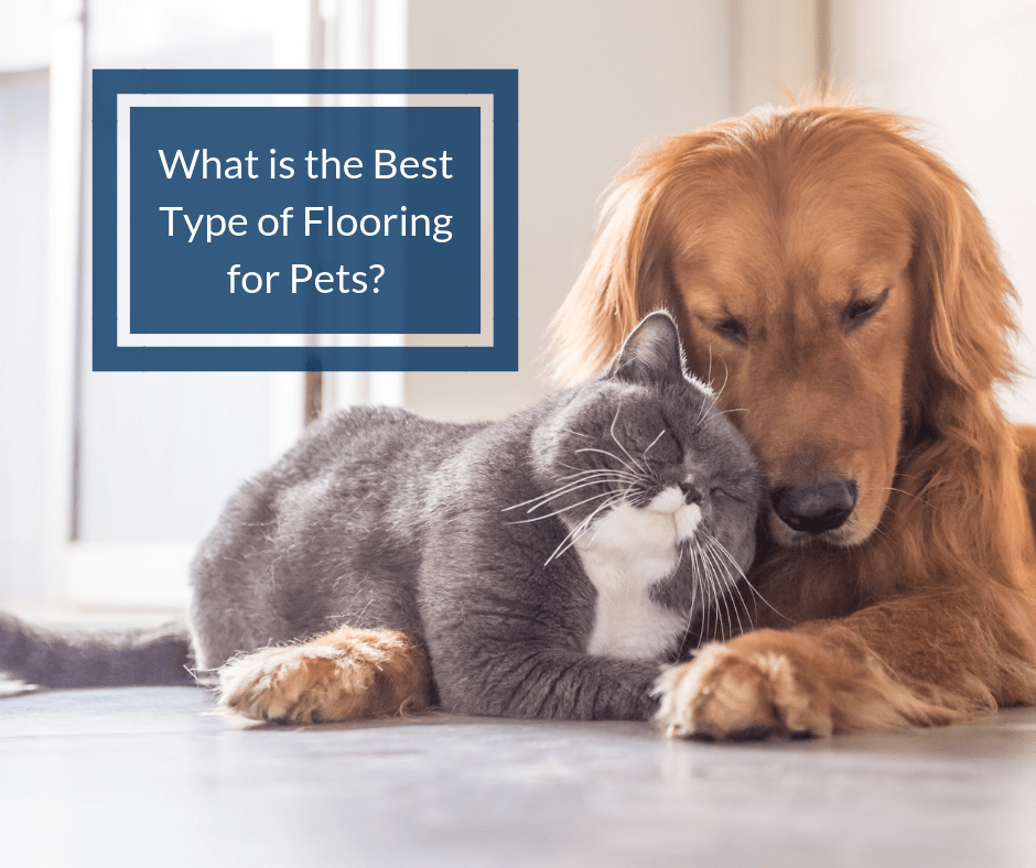 what is the best flooring for pets