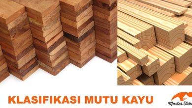 Photo of Klasifikasi Mutu Kayu, kekuatan Kayu, dan Keawetan Kayu