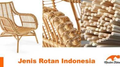 Photo of Mengenal Jenis Rotan Sebagai Bahan Furniture Kelas Dunia