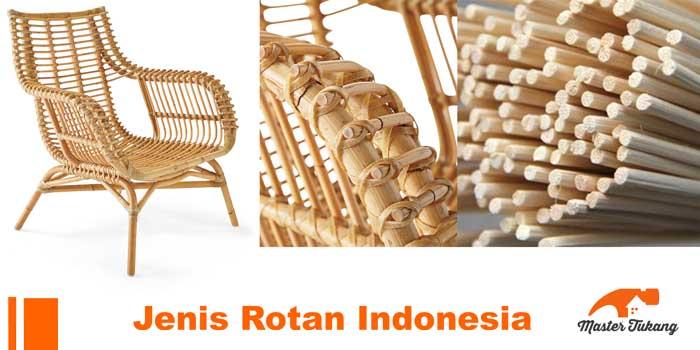 Aneka Jenis Rotan Indonesia