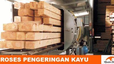 Photo of Tahapan dan Proses Pengeringan Kayu