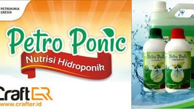Photo of Petro Ponic, Nutrisi Hidroponik Praktis dari Petrokimia