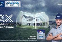 Dulux AquaShield cat anti bocor