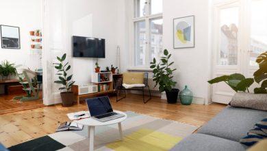 interior rumah dengan tanaman