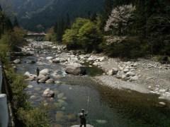 釣り人でにぎわう大芦川