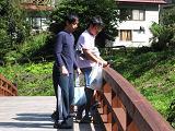 橋の上から岩魚観察