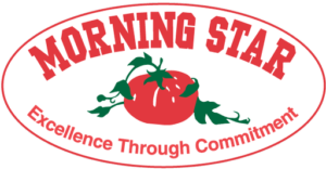 Morningstar logo graphic