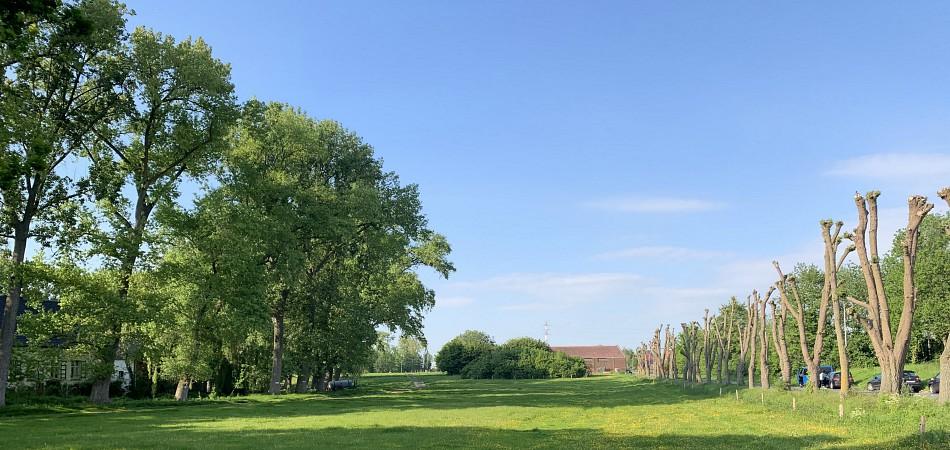 Heerlijkheid van Heule: A Restorative Approach to Farming