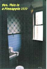 23.ailsapowderroom_before_Pineapple