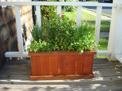 Simpllet act of Green: Container Herbs Garden