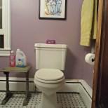Porcher-Toilet-Update