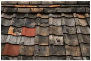 Warn mixed material roof