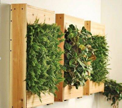 ELT Indoor Green Wall