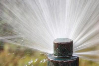 Close up metal sprinkler head