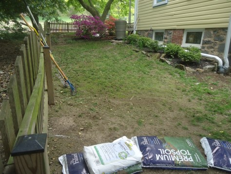 begin prepping for grass seed