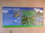 Mosaiculture
