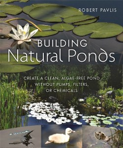 building-natural-ponds-1-500