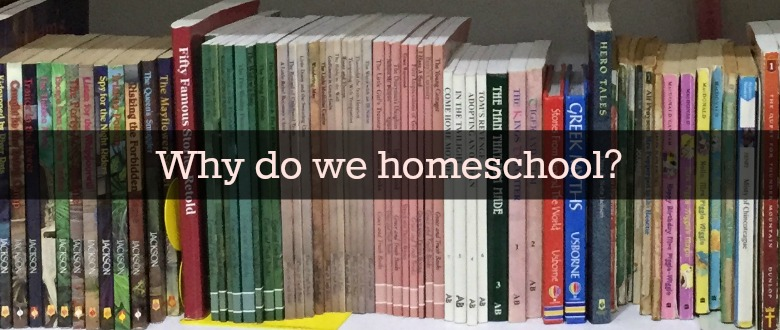 I did not start out wanting to homeschool. What changed our minds? Why do we homeschool now?