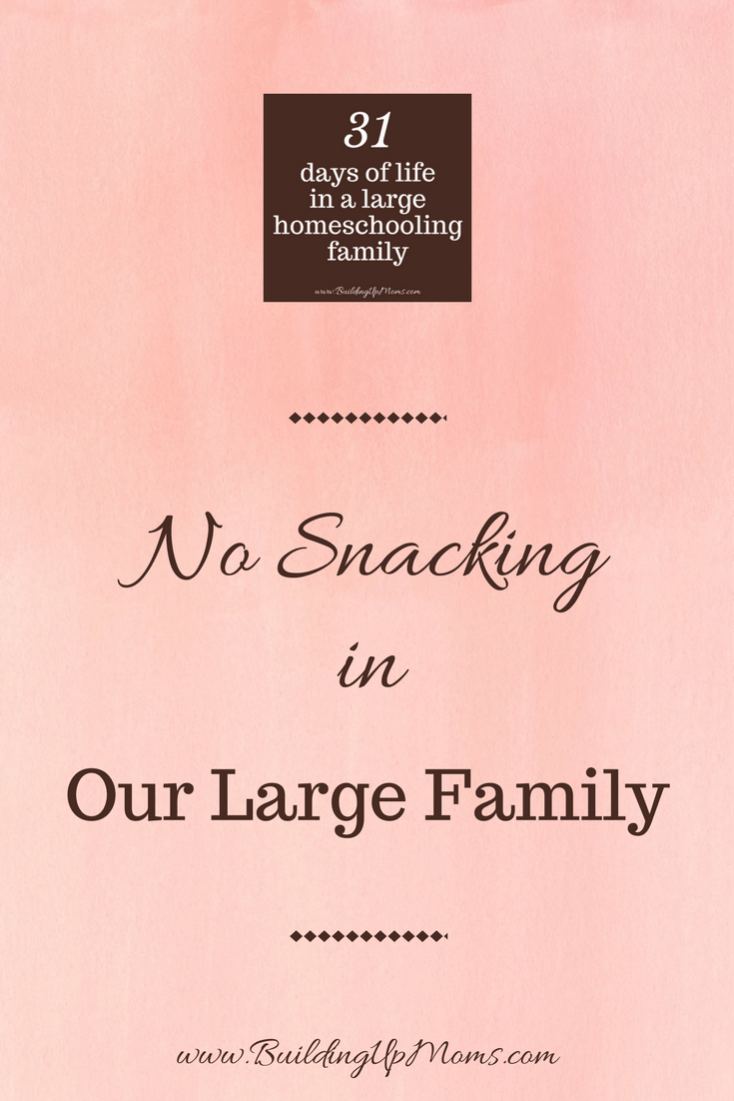 We had a no snacking rule in our large family