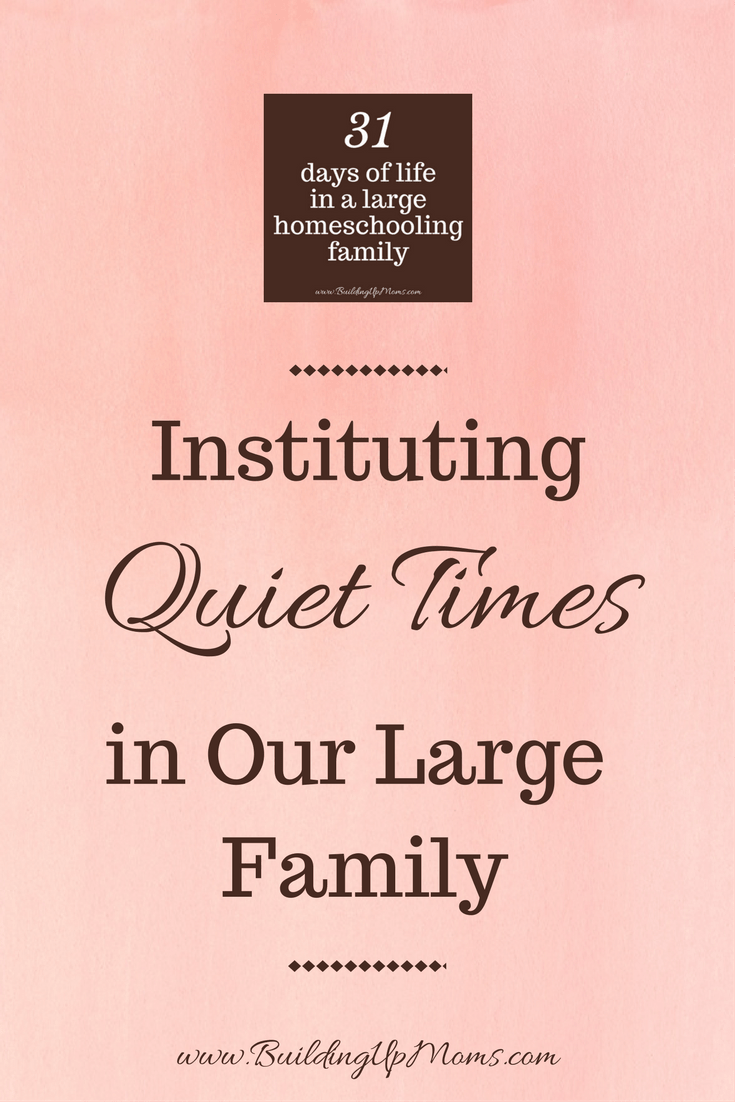 Instituting Quiet Times when Naptimes End in our large family