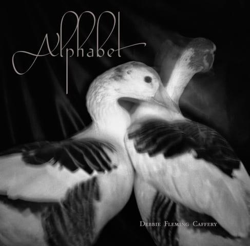 AlphabetCover_FromDebbie