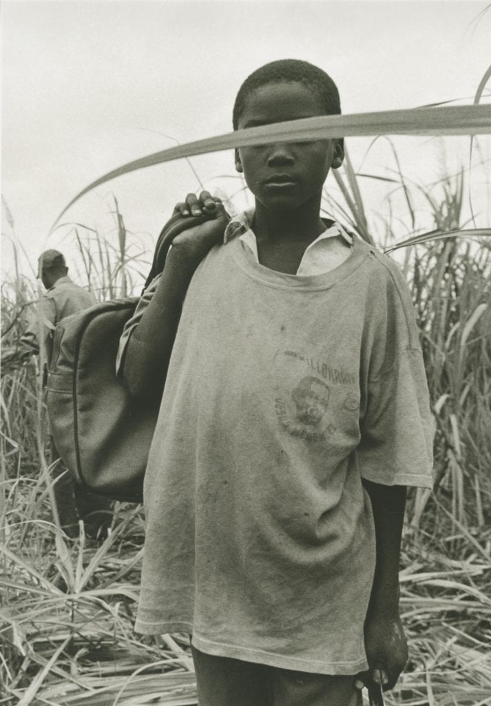 Boy with Sugar Cane Leaf 2001 Gelatin silver print 16 x 20 in. ©Raúl Cañibano