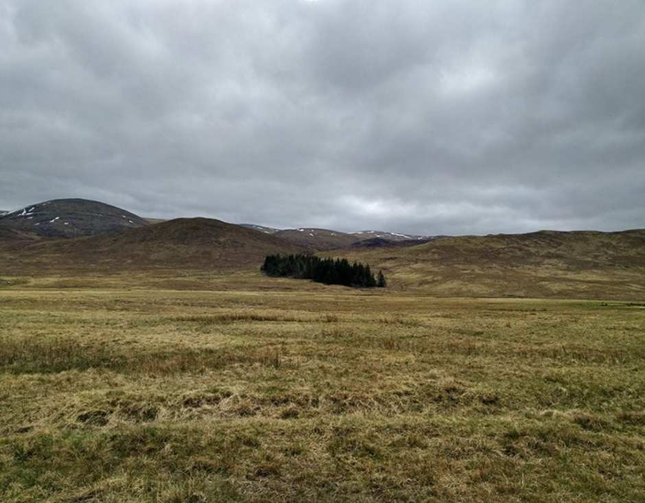 Unnamed Forest, Highlands of Scotland, Corrieyairack Pass.