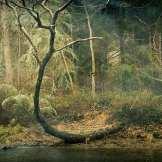Along The River ©KarenKlinedinst