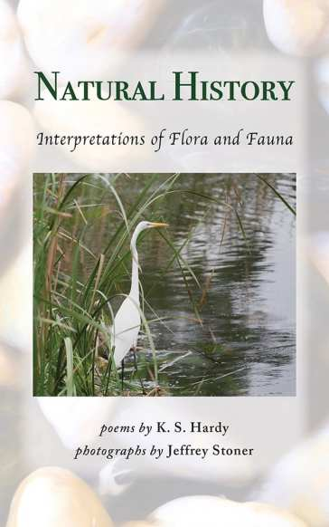 Natural History: Interpretations of Flora and Fauna | Jeffrey Stoner