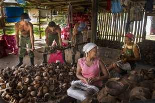 Coconut processing, Guantanamo ©Chip Cooper