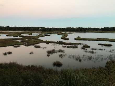 Sunset on the Marsh, Dewees Island, SC ©NancyMcCrary