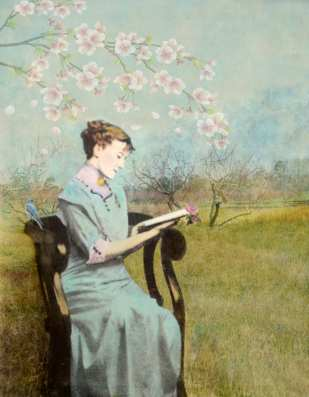 Reading in the Orchard ©Dale Niles