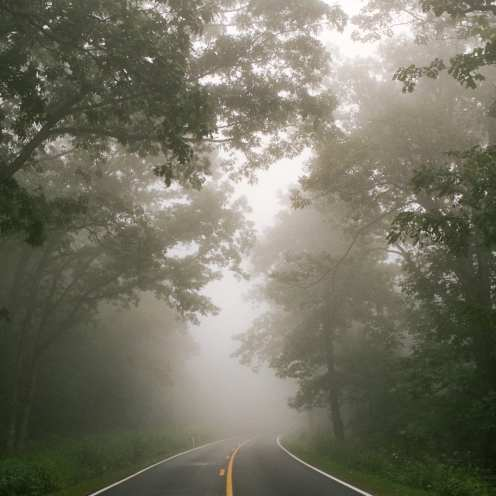 Songs From the Road ©Charlotte Strode