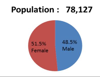 City of Racine population 2017