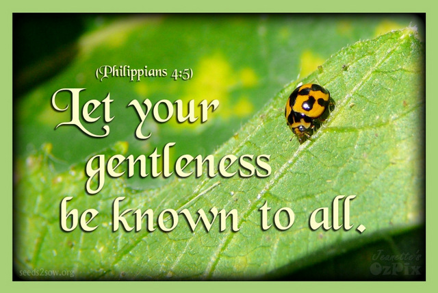 Image result for gentleness of jesus