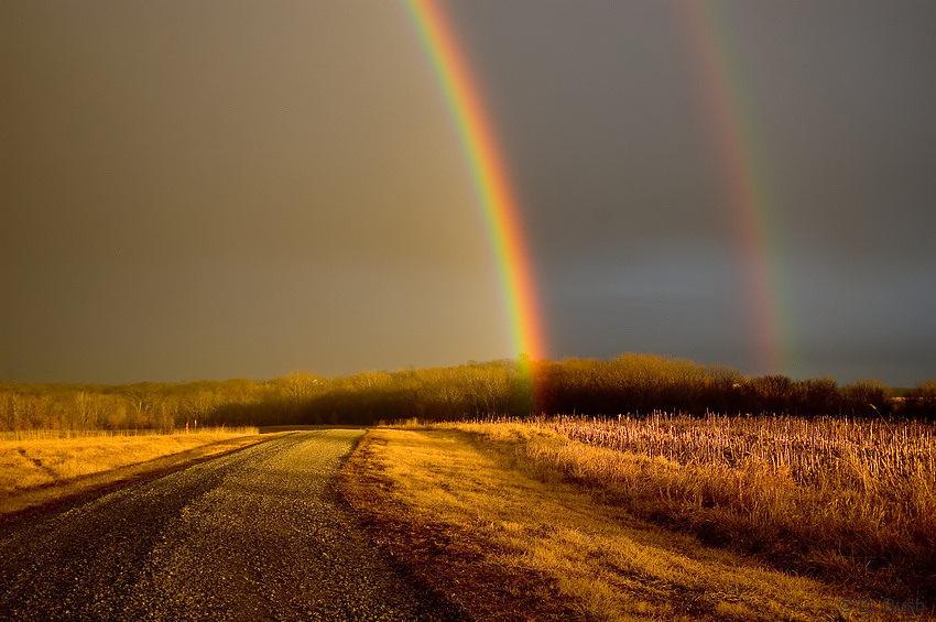 Regenboog | 20