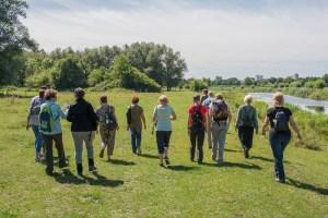 Read more about the article Wandelverslag 'Eten uit de natuur'