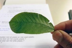 Lees meer over het artikel De natuurgidsen opleiding is gestart!