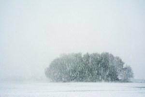 Lees meer over het artikel Fotograferen in de sneeuw